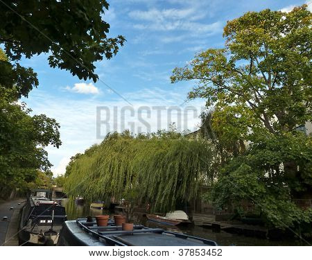 Bright Sky And Green Riverside