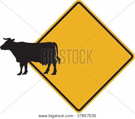 Cattle Crossing Funny Sign