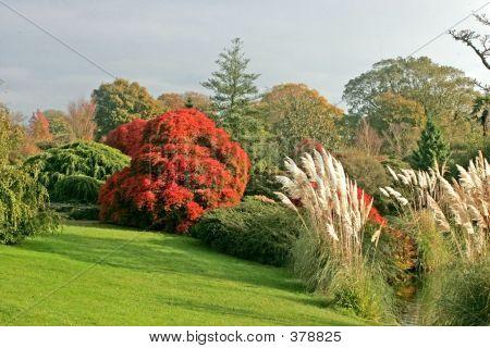 Wakehurst Gardens