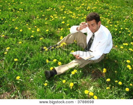 Businessman And Dandelions