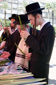 Orthodox Jews Preparing For Sukkoth