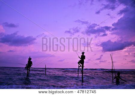 The Traditional Stilt Fishermen