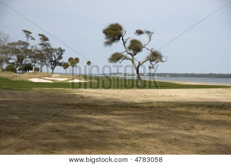 Golf Hole On Ocean