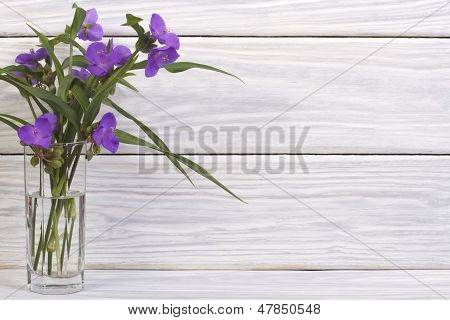 Blue spiderwort flowers in a glass on the wooden