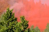 stock photo of retarded  - Droping fire retardant at a working natural cover fire near Roseburg Oregon - JPG