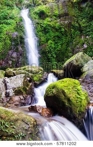 Waterfall In Deep Forest,