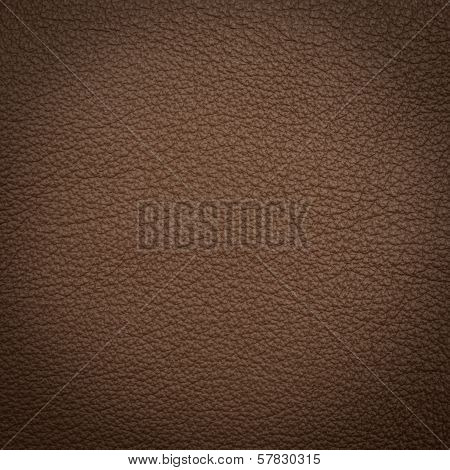 Brown leather macro shot