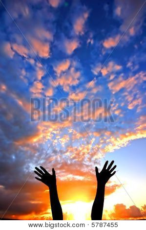 Hands Up To The Sky Showing Happiness