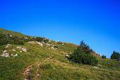 stock photo of nano  - View of the Nanos mountain in Slovenia - JPG