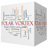 foto of frostbite  - Polar Vortex 3D cube Word Cloud Concept with great terms such as cold wind chill ice and more - JPG