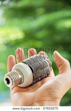 hand holding eco light bulb