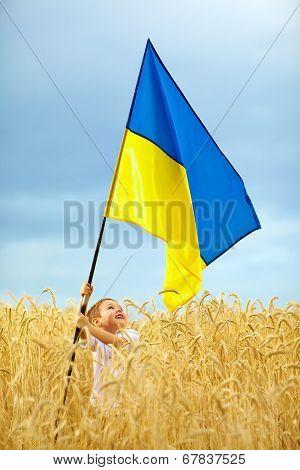Glory To Ukraine. Boy Waving Ukrainian Flag On Wheat Field