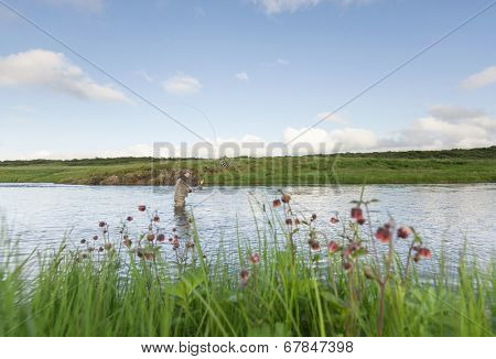 Man fishing for salmon in a beautiful surrounding, wildflowers in the foreground
