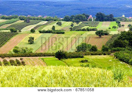 Extensive Rural Landscape