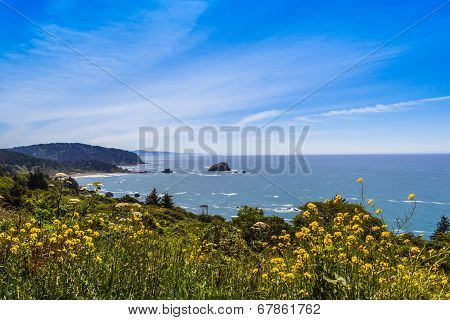 blue sky with white clouds over the pacific ocean in California