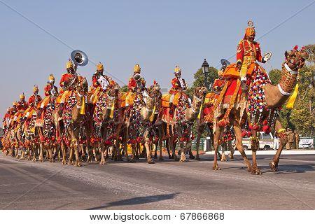 Camel Mounted Band on Parade