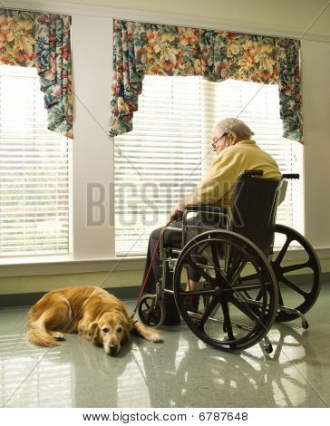 Elderly Man In Wheelchair And Dog