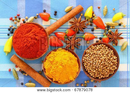 Selection of Indian spices