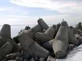 picture of dike  - Concrete stones on Latvian dike by the Baltic sea - JPG