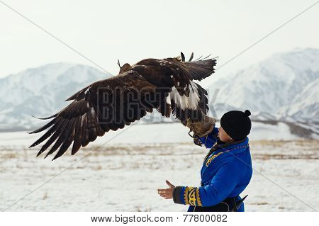 Nura, Kazakhstan - February 23: Eagle On Kid's Hand In Nura Near Almaty On February 23, 2013 In Nura