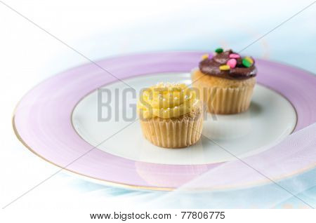 Two mini cakes arranged on a plate.