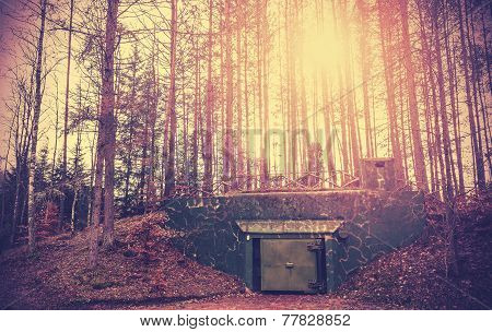 Scary Bunker Hidden In A Forest With Surreal Colors.