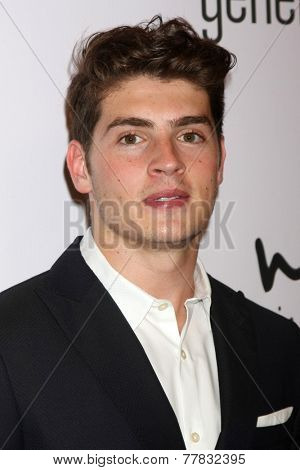 LOS ANGELES - DEC 5:  Gregg Sulkin at the 6th Annual Night Of Generosity at the Beverly Wilshire Hotel on December 5, 2014 in Beverly Hills, CA
