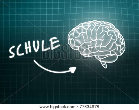 Schule Brain Background Knowledge Science Blackboard Turquoise