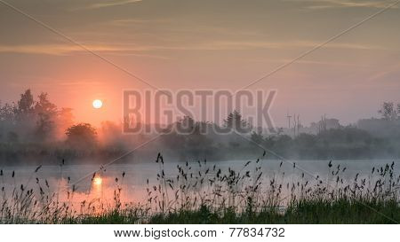 Purple Sunrise Over A Lake