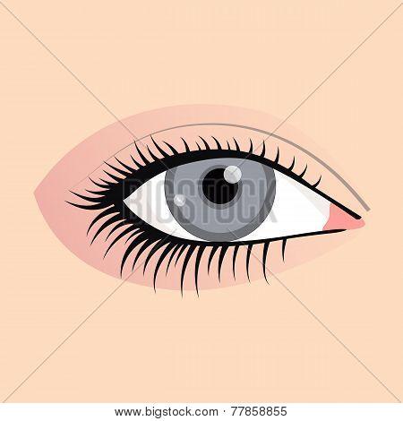 Open female eyes image with beautifully fashion make up