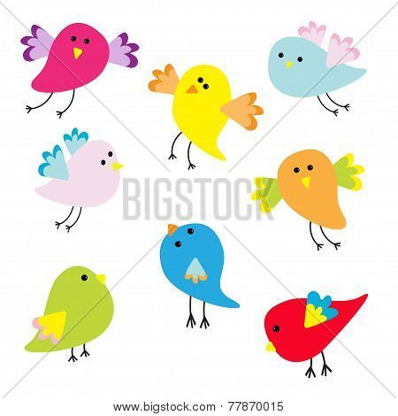 Set Of Cute Cartoon Birds Flat Design