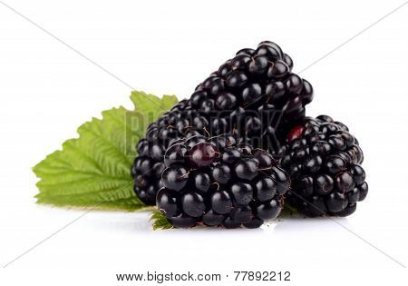 Studio Shot Of Two Fresh Blackberries With Leaves Isolated White