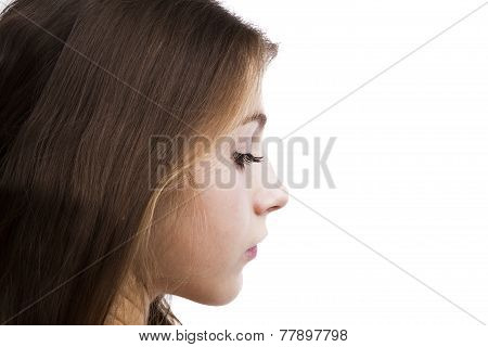 Portrait Of A Charming Young Girl