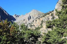 stock photo of samaria  - Crete island in Greece - JPG