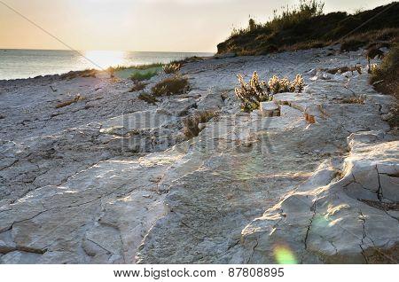 Stony seashore