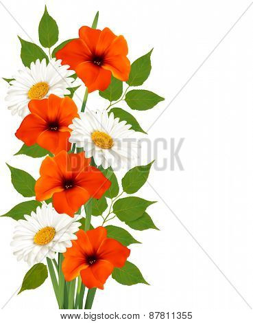 Summer background with colorful beautiful flowers.