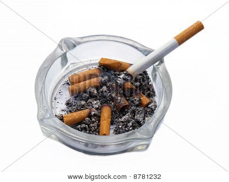 Cigarettes in white background