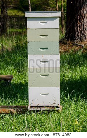 Stacked Beekeeping Boxes