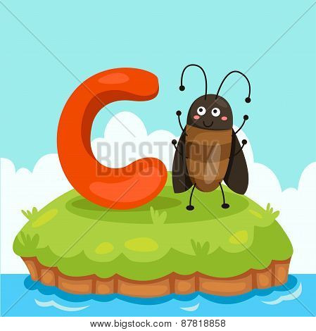 Illustrator of Letter 'C is for cockroach'