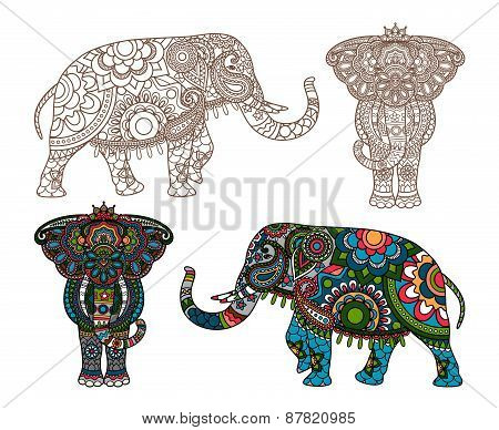 Vector Indian elephant