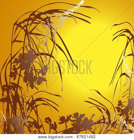 Sunset floral background