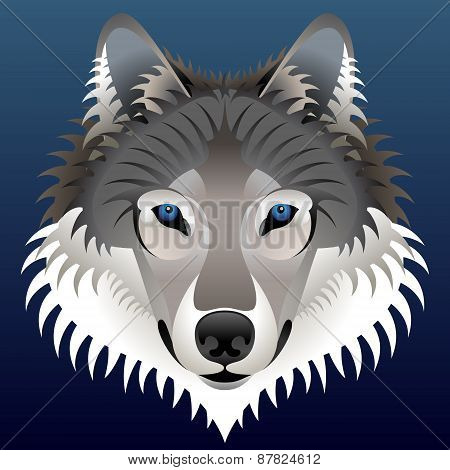 Realistic Wolf Face Looks Ahead