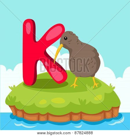 Illustrator of Letter 'K is for Kiwi bird'