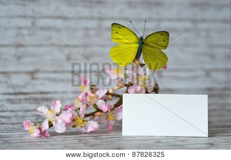 Close up Empty White Note Card, with Butterfly Insect on Orchid Flowers, Placed on Wooden Table.