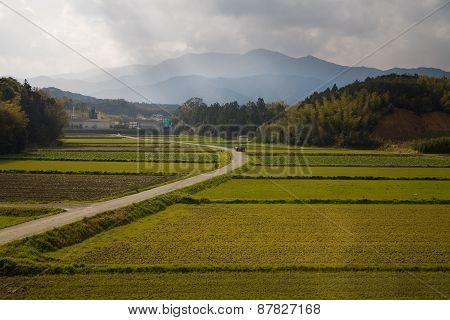 Japanese Rural Scene