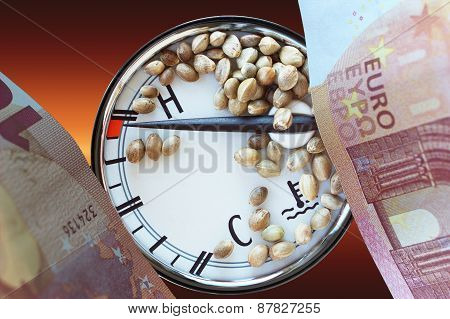 Auto Thermometer Ten Euro Banknotes And Hemp Seeds