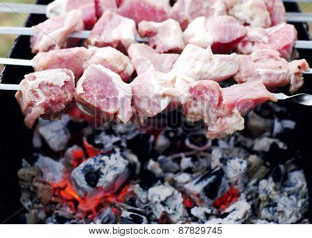 Cooking shashlik (kebabs) on mangal