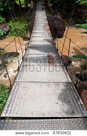 Suspension Bridge In Tropical Forest