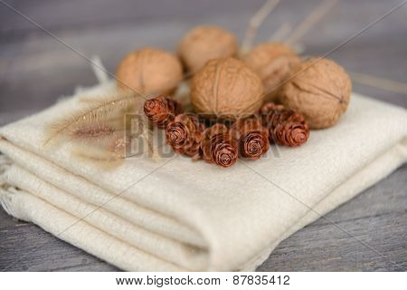 Walnuts, fir cones and cones on the put cloth on a table