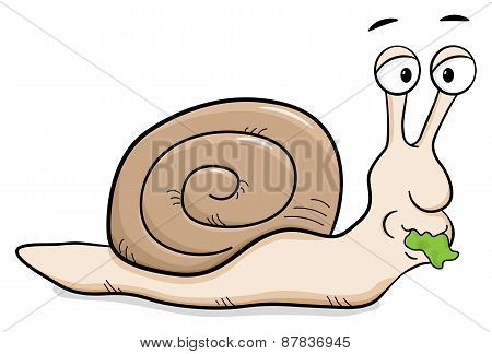 Cartoon Snail With Snail Shell